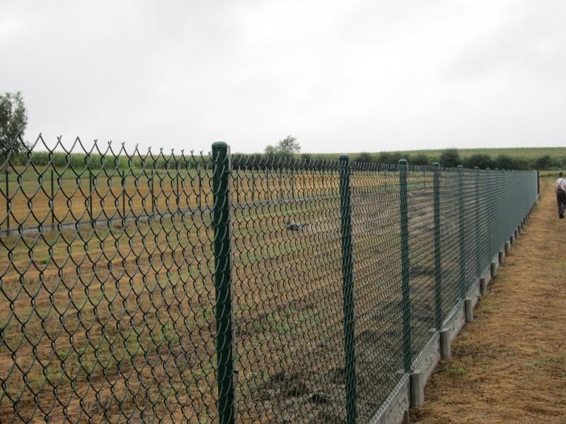 pro-ogrodzenia ogrodzenia siatka 2
